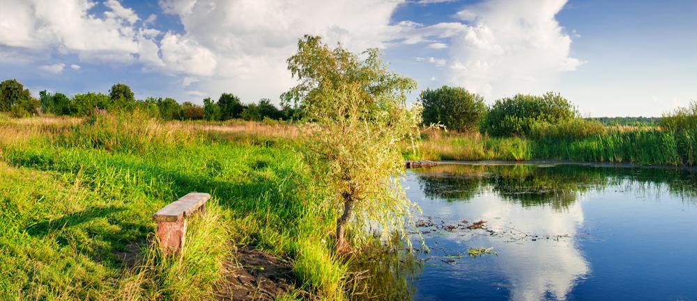 Landschaft, fluß, bank, shutterstock